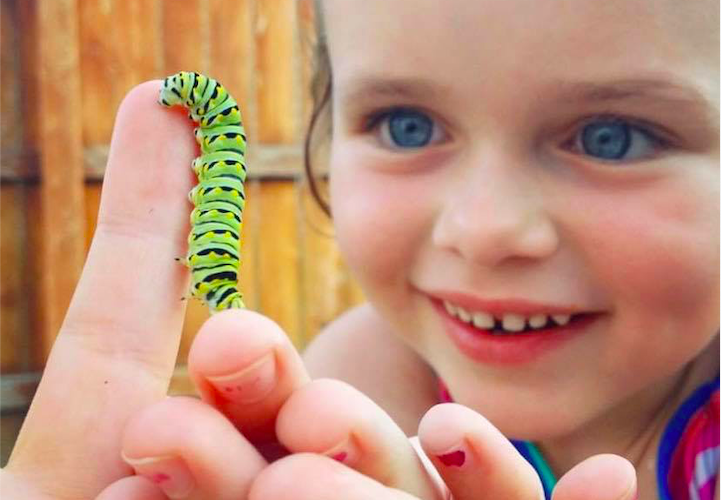 """Caterpillars"" and ""Unwavering"""